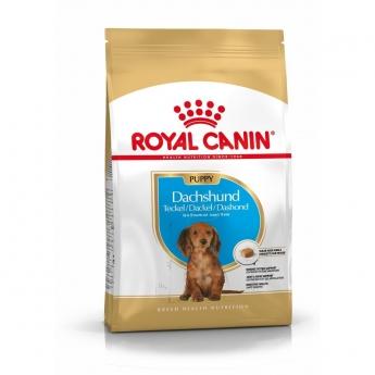 Royal Canin Breed Dachshund Junior 1,5 kg