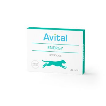 Avital Energy 36 tablettia**