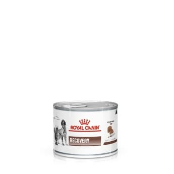 Royal Canin Veterinary Diet Dog & Cat Recovery wet