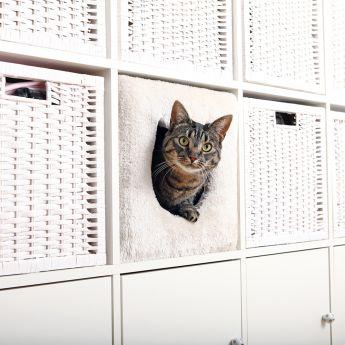Trixie piilopaikka kirjahyllyyn