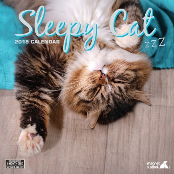 Magnet & Steel 2019 kalenteri Sleepy Cat**