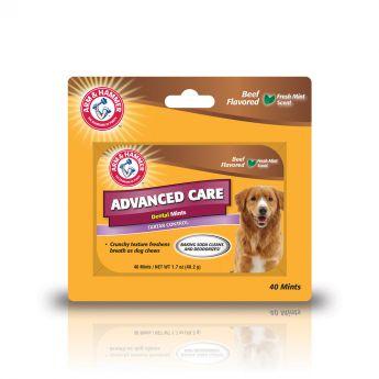 Arm&Hammer Dental makupala minttu koiralle (50 grammaa)**