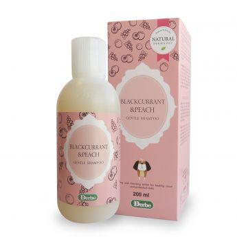 Derbe Blackcurrant & Peach -shampoo 200 ml