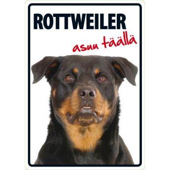 """Lemmikkikyltti """"Rottweiler asuu täällä"""" (21 x 15 cm)"""