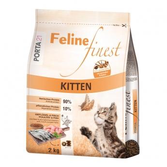 Feline Porta 21 Finest Kitten
