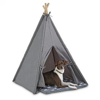 PCO Jubilee tiipii-teltta