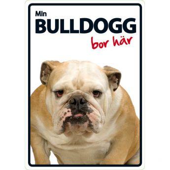 "MS-kyltti ""Min bulldog bor här"""