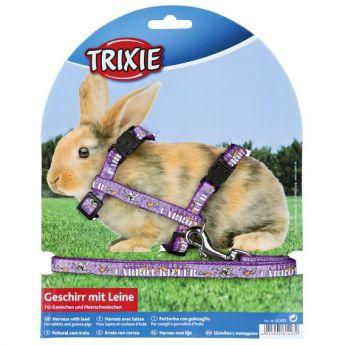 Trixie Rabbit valjassetti