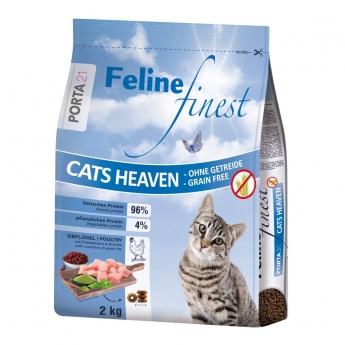 Feline Porta 21  Finest Cats Heaven