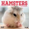 Magnet & Steel 2019 kalenteri Hamsters