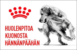 royal canin care ruoka