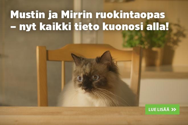 kissan painonhallinta