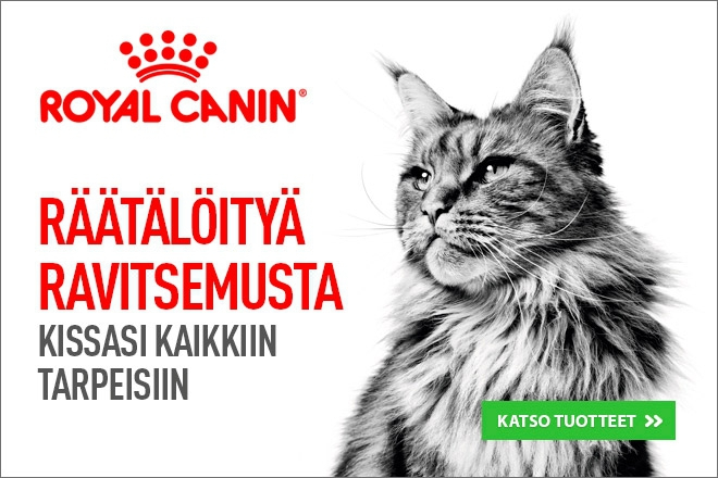 royal canin kissan ruoka