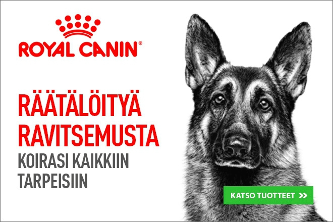 royal canin koiran ruoka