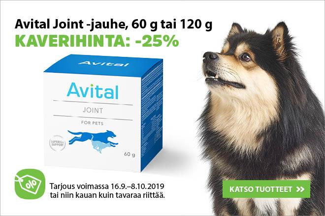 tarjouksia koirille