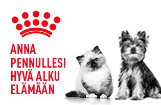 royal canin pennut