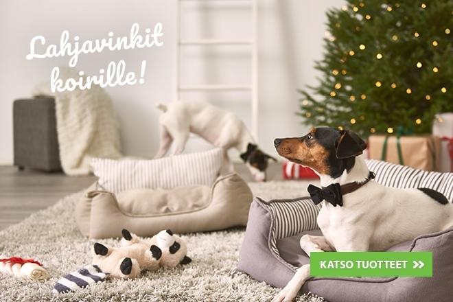 joululahjavinkit koiralle