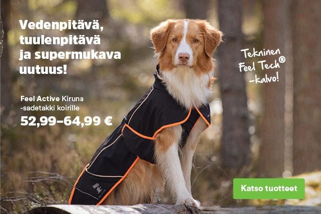 Feel Active Kiruna -sadetakki koirille