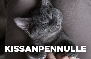 purenatural kissanruoka kissanpennulle