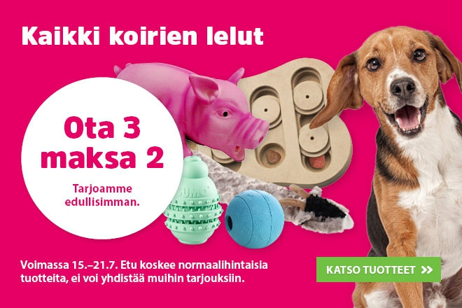 Koiran lelut ota 3 maksa 2