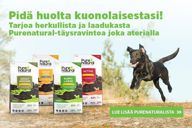 koiranruokaa