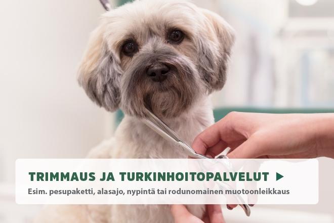 Trimmaus
