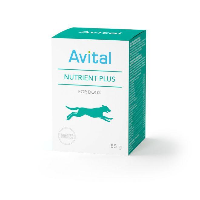 Avital Nutrient Plus -jauhe