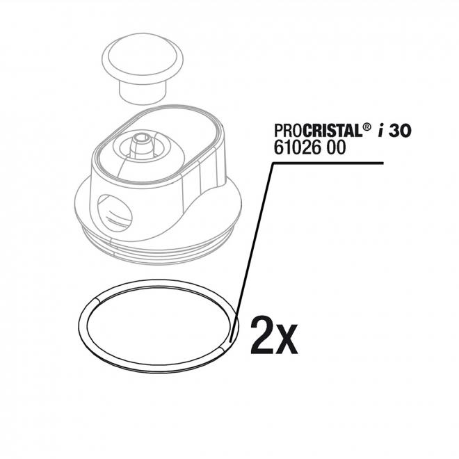 JBL ProCristal i30 O-rengas 2 kpl