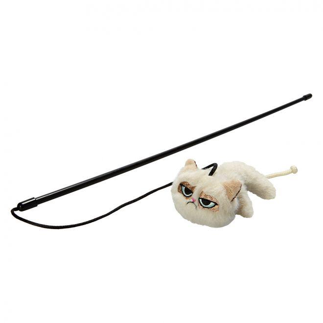 Grumpy Cat onki kissalla
