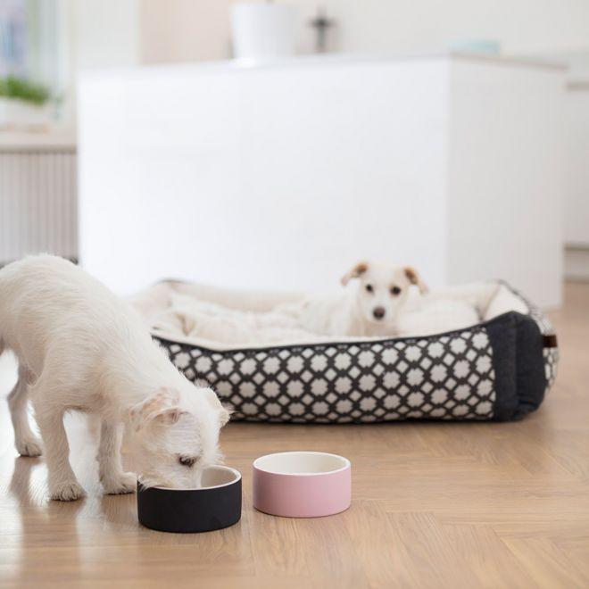 Happy Pet Project Soak-to-Cool vesikuppi
