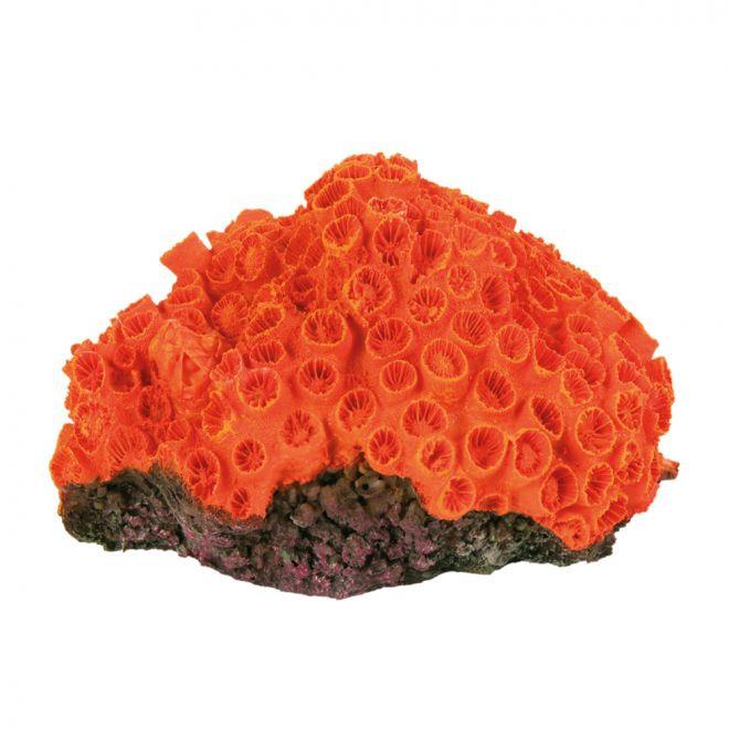 Trixie Korallikoriste 10-13 cm