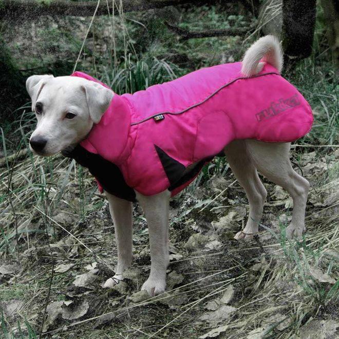 Rukka Drift Wintercoat koiran takki pinkki