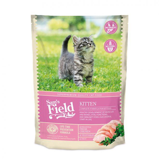 Sam's Field Cat Kitten
