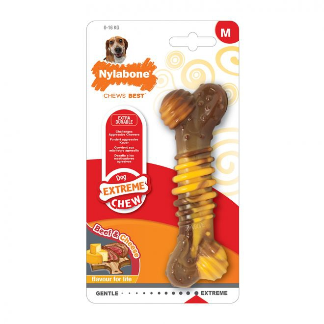 Nylabone Extreme Texture Beef and Cheese