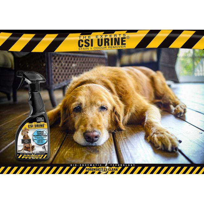 CSI Urine Dog suihke