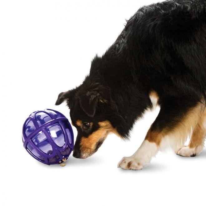 Busy Buddy Kibble Nibble Feeder Ball
