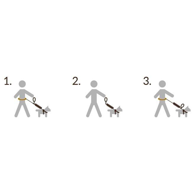 Pro Dog Handsfree setti sis. talutusvyö+talutin