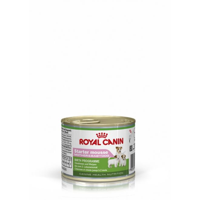 Royal Canin Starter Mousse 12 x 195 g