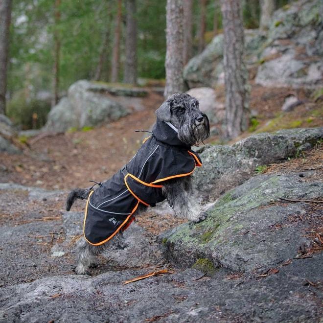 Feel Active Kiruna koiran sadetakki musta