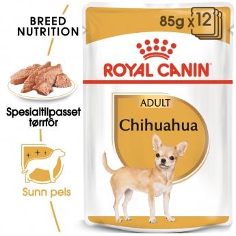 Royal Canin Breed Chihuahua 12x85g