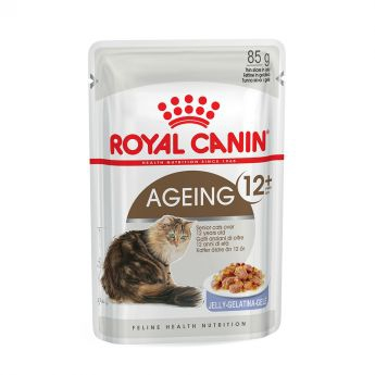 Royal Canin Ageing +12 in Jelly (85 gram)