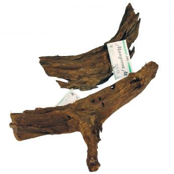 JBL Mangrove Trerot 35-45cm