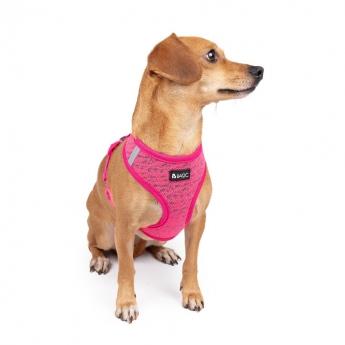 Basic Knit sele rosa