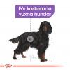 Royal Canin Maxi Sterilised Voksen