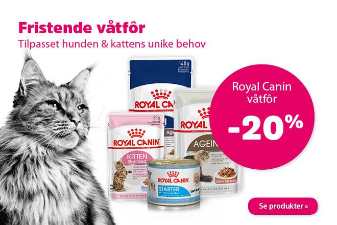 20% på våtfôr fra Royal Canin