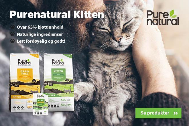 Purenatural Kitten