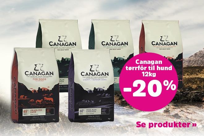 Få 20% rabatt på 12kg Canagan Dog