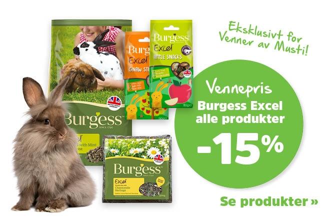 15% på Burgess
