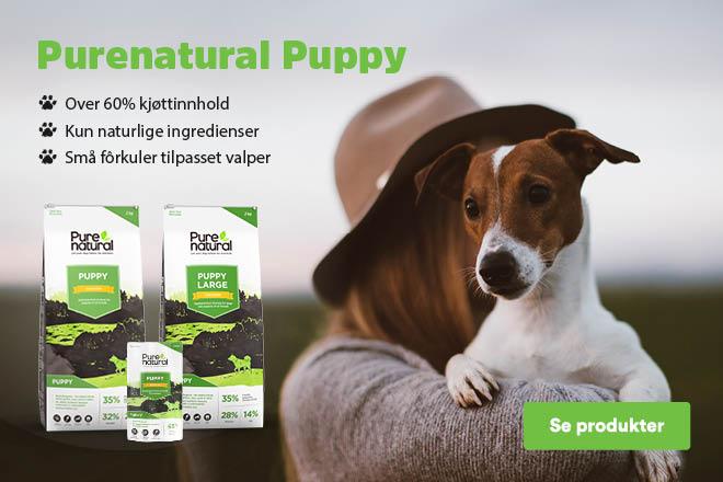 Purenatural Puppy