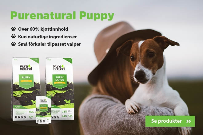 Purenatural Puppy